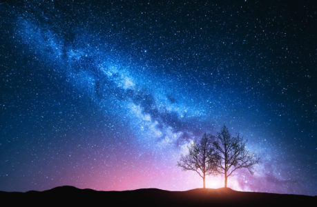 Starry sky with pink Milky Way and trees. Night landscape with alone trees on the hill against colorful milky way. Amazing galaxy. Nature background with beautiful universe. Astrophotography